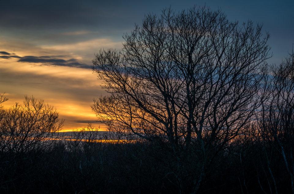 Studland Sunset